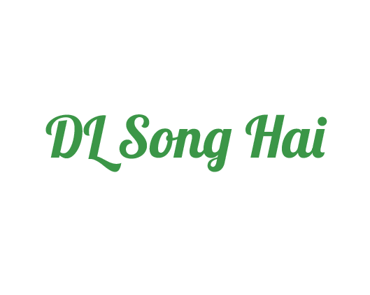 Song Hai Travel